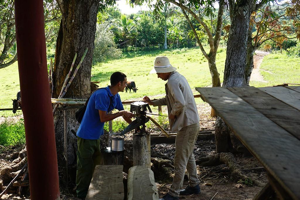 Hier wird Zuckerrohr gepresst, der Saft nennt sich Guarapa und ist picksüß. Nicht besonders gut.