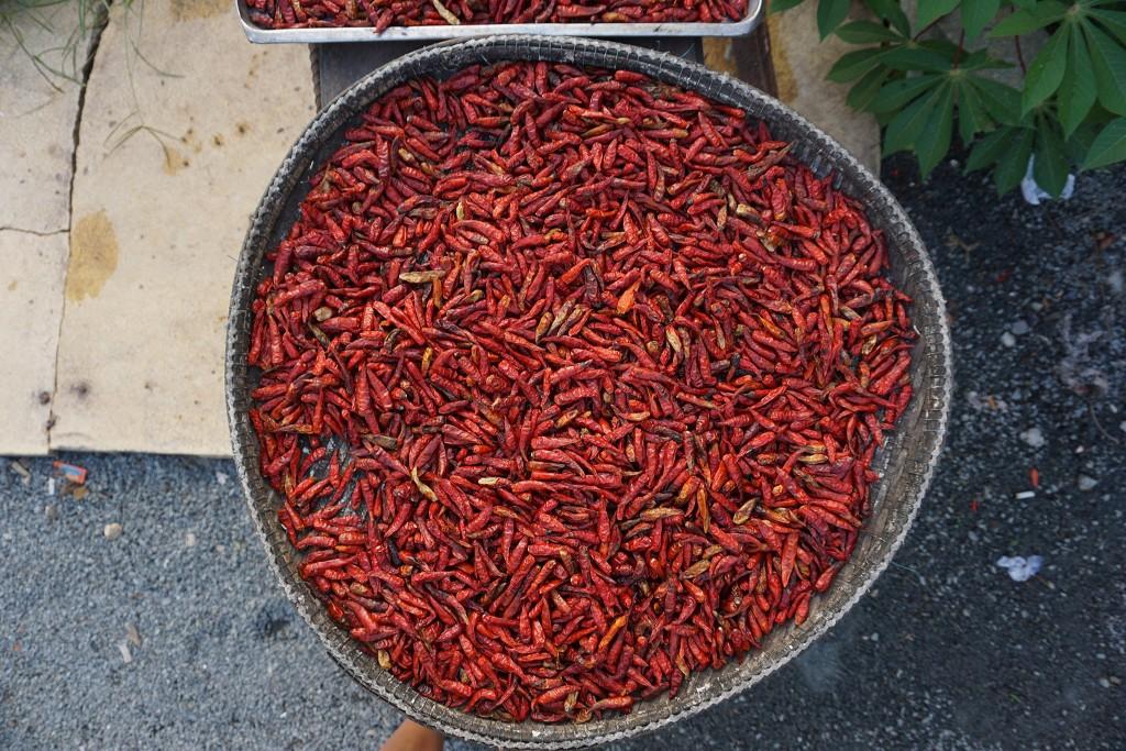 Bei einer Raststation werden Chilis getrocknet