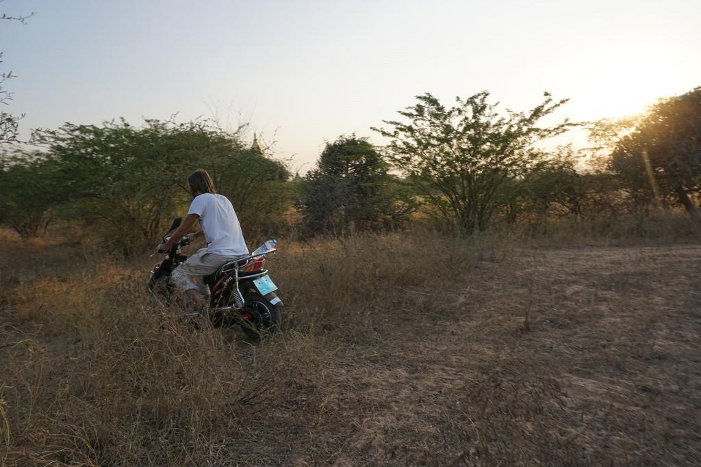 Ab durch die Pampa