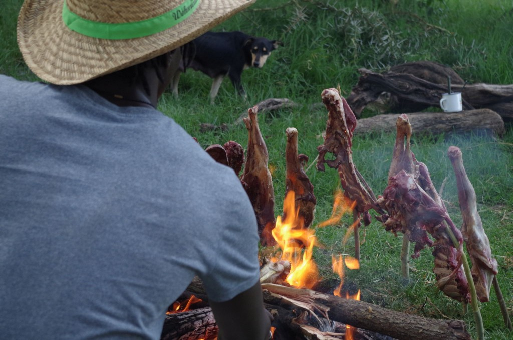 auch die Hunde riechen das frische Fleisch